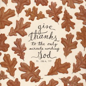 Give Thanks - Oak Leaves - Hannah Pickering