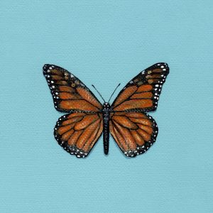 Monarch Butterfly Art Print - Hannah Pickering