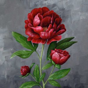Hannah Pickering Red Peony Art Print