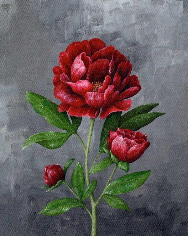 Hannah Pickering Red Peony Art Print